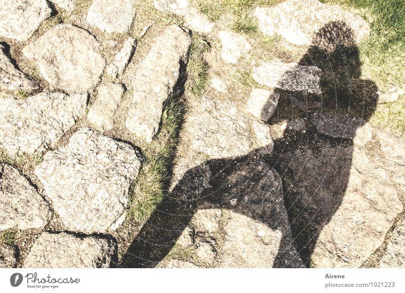 dunkler Begleiter Mensch 1 Fußgänger Wege & Pfade Fußweg Hund Tier Stein gehen wandern außergewöhnlich dunkel hell schwarz weiß Ausdauer anstrengen Bewegung