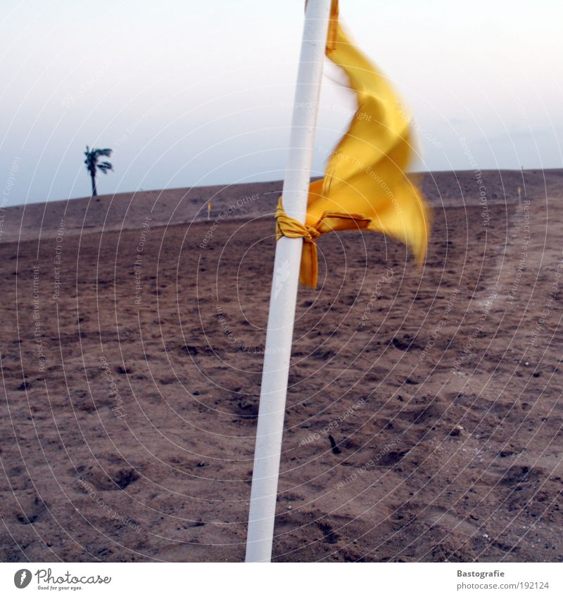 Ecke. Flanke. Toooooooooor. Himmel Natur gelb Sport Spielen Gefühle Sand Garten Erde Wetter Wind Feld Freizeit & Hobby Armut Sturm Veranstaltung