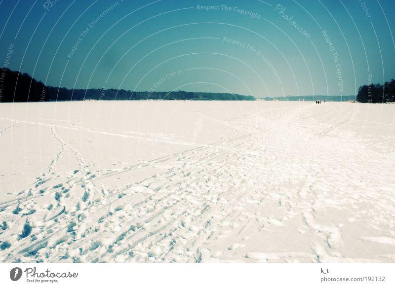 Flusslandschaft Natur Himmel weiß blau Winter ruhig kalt Schnee Erholung Freiheit Eis hell wandern Frost Fluss Klima