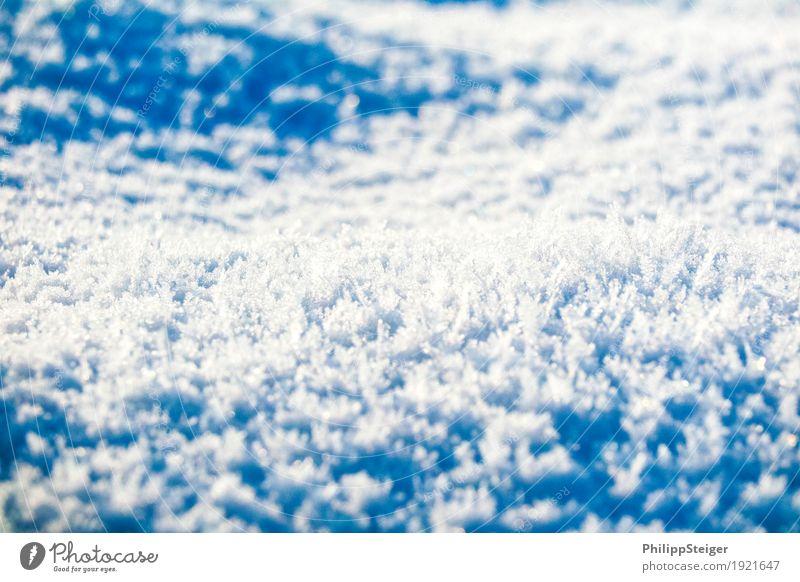 Eiskristalle auf dem Boden Natur Wasser Winter Umwelt kalt Schnee Urelemente Frost gefroren bizarr Pfütze