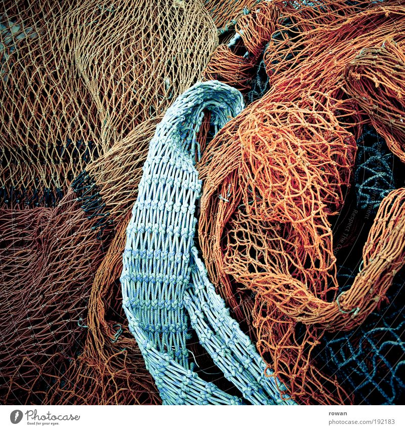 Netze Küste nass blau mehrfarbig rot Netzwerk chaotisch Knoten Knotenpunkt Vernetzung Linie Angeln Fischereiwirtschaft Hafen Meer maritim fangen Fischernetz