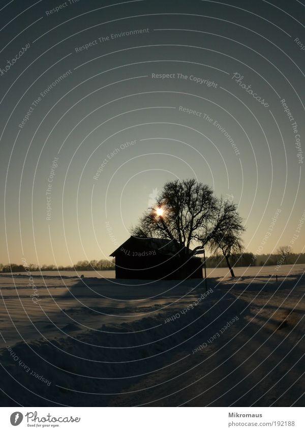 Winter Natur Himmel weiß Baum Sonne blau ruhig Haus Einsamkeit kalt Schnee Erholung träumen Landschaft Eis