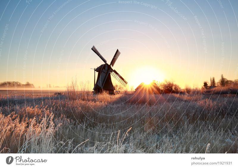 schöner Sonnenaufgang hinter Windmühle im Winter Natur Landschaft Himmel Gras Wiese Gebäude Architektur blau gold Gutshaus Stern Sonnenschein Sonnenstrahlen