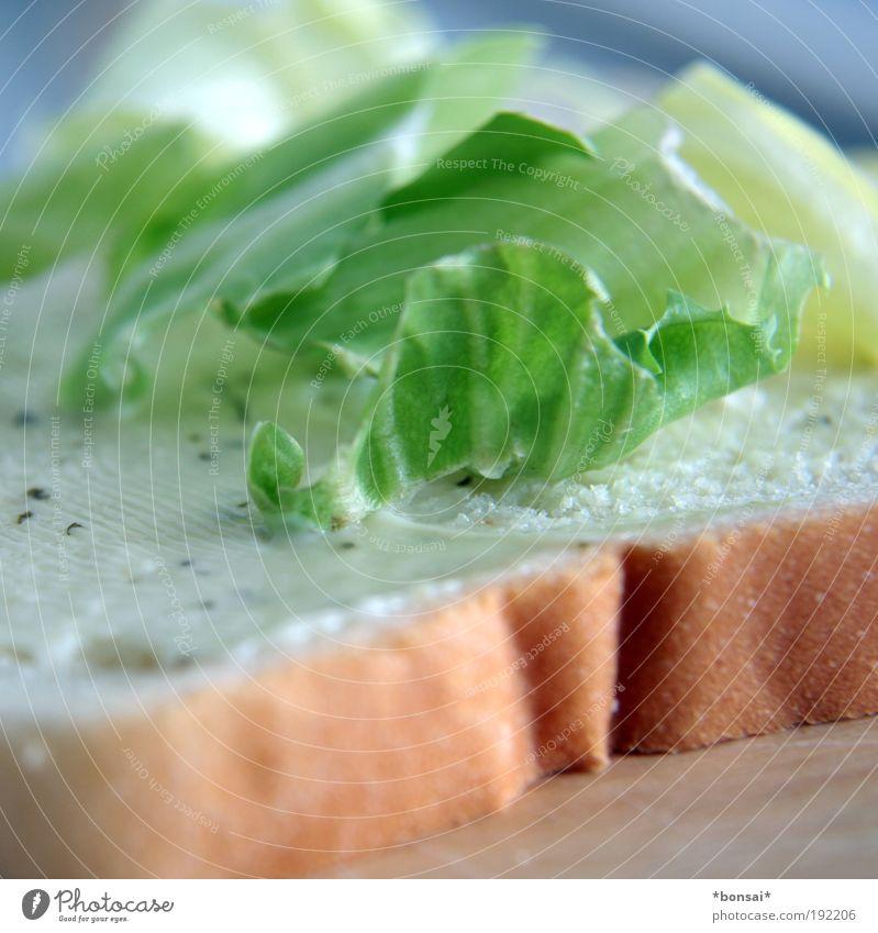 making of weiß grün Ernährung braun Geschwindigkeit frisch einfach lecker Appetit & Hunger Brot genießen Leichtigkeit Salatbeilage Gemüse Belegtes Brot