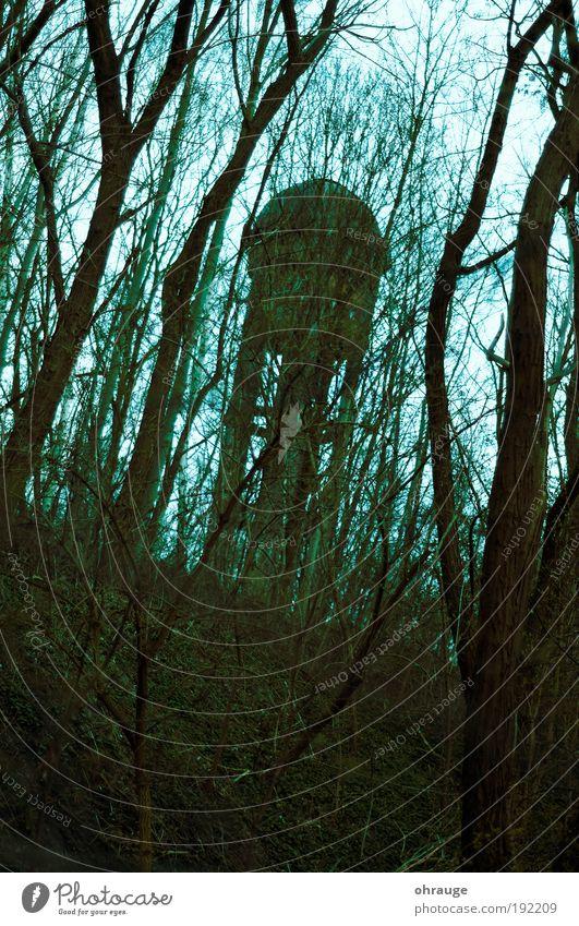 Der Turm Natur Baum Pflanze Wald Berlin Herbst Tod träumen Park Landschaft Angst Nebel Umwelt Trauer bedrohlich