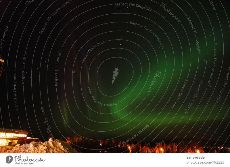 Polarlicht in Arjeplog Natur grün schwarz Stimmung Nachthimmel Fernweh Überraschung Schüchternheit Langzeitbelichtung Nordlicht Polarnacht