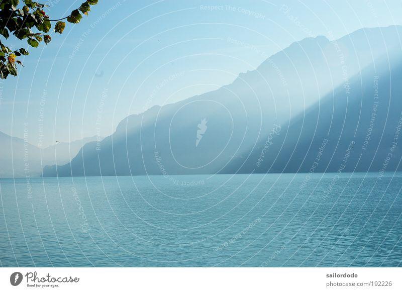 Herbstmorgen am Brienzer See Umwelt Natur Landschaft Wasser Alpen Berge u. Gebirge Axalphorn Faulhorn Berner Oberland Brienzersee blau Stimmung schön Einsamkeit