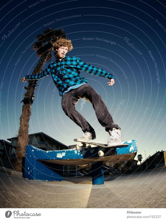 Skater unter der Palme Mensch Jugendliche blau Freude Erwachsene Sport Bewegung springen maskulin 18-30 Jahre fahren Junger Mann Skateboarding Fischauge Spanien