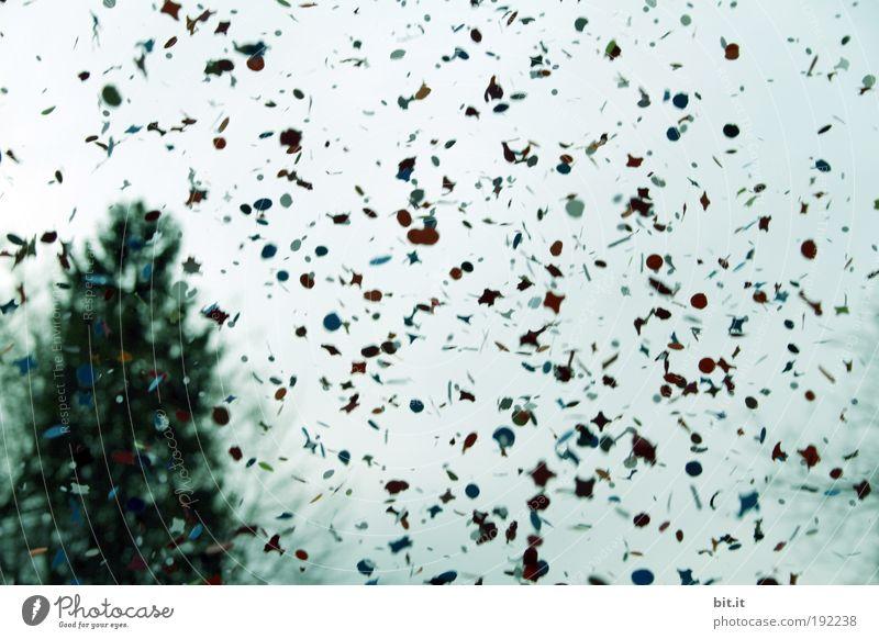 *350 KONFETTI* Himmel blau Baum Feste & Feiern Fröhlichkeit Karneval Tanne werfen Bewegungsunschärfe