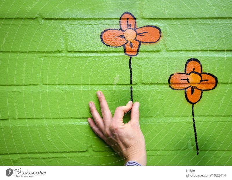 Blumenpflücken || Freude Freizeit & Hobby Hand Mauer Wand Fassade Stein Graffiti festhalten lustig grün orange Glück Frühlingsgefühle Verliebtheit Romantik