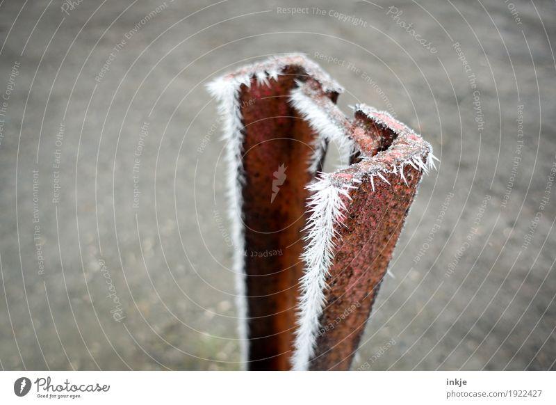 Frost auf Rost | prima Klima Winter Eis Metall Eiskristall kalt Spitze stachelig gefroren Farbfoto Außenaufnahme Nahaufnahme Menschenleer Textfreiraum links