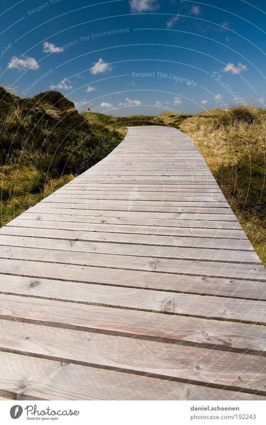 Amrum_1 Natur Ferien & Urlaub & Reisen blau grün Sommer Sonne Meer Erholung Landschaft Einsamkeit Strand Umwelt Wege & Pfade Küste Freiheit Horizont