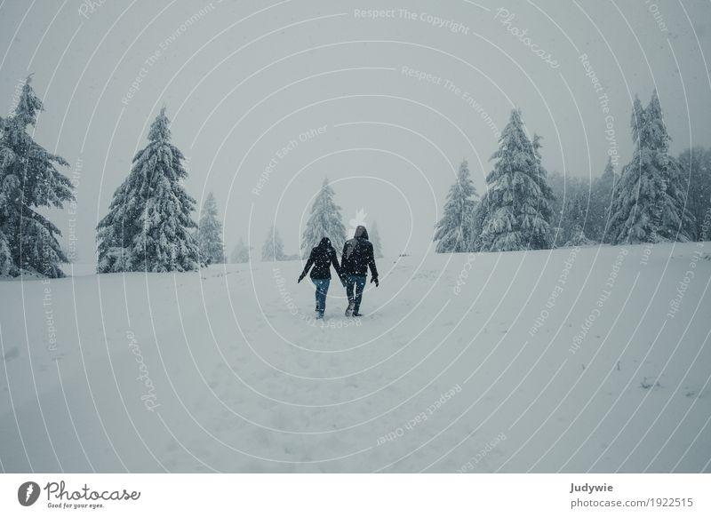 Unterwegs in Narnia Winter Schnee Winterurlaub Mensch maskulin feminin Freundschaft Paar Partner Umwelt Natur Klima Eis Frost Schneefall Wald Hügel festhalten