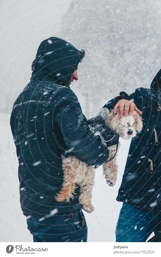 Kleiner Hund blind vor Schnee Natur Tier Winter Umwelt kalt Familie & Verwandtschaft Zusammensein Freundschaft Schneefall Eis Klima Schönes Wetter Schutz