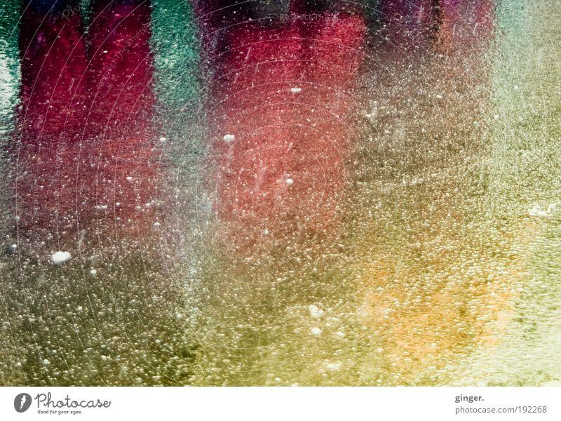 Jeck verlaufen Mensch grün rot gelb dunkel Straße Feste & Feiern Beine hell Schneefall warten nass stehen Hose Karneval Reflexion & Spiegelung