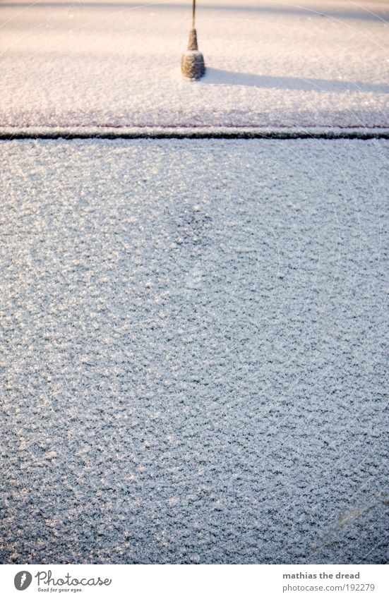 BITTE KRATZEN Winter kalt Schnee PKW Eis Verkehr Frost Autofahren Autofenster minimalistisch normal Windschutzscheibe schrecklich