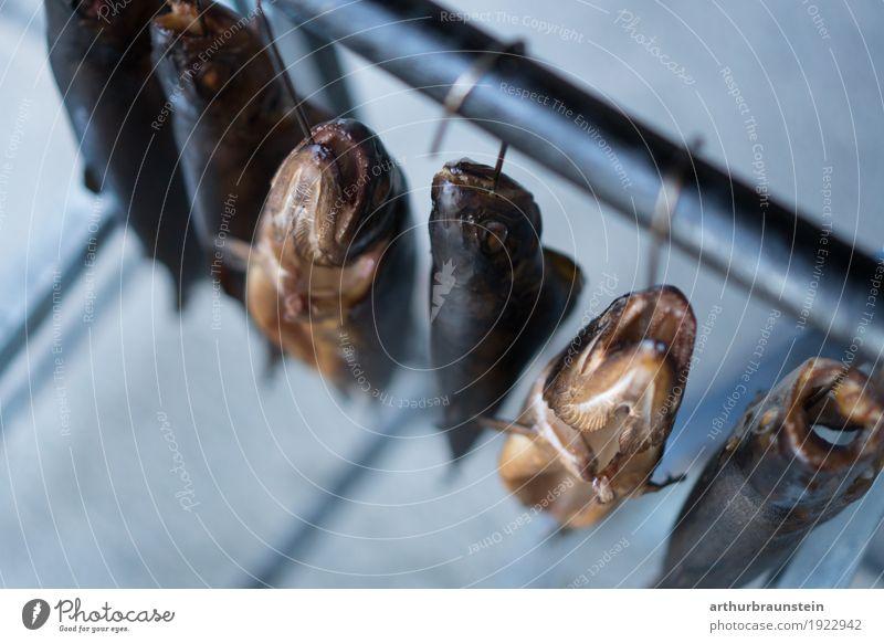 Geräucherte Fische am Haken frisch aus dem Räucherofen Gesunde Ernährung Tier Speise Essen Gesundheit Lebensmittel Freizeit & Hobby genießen Tiergruppe kaufen