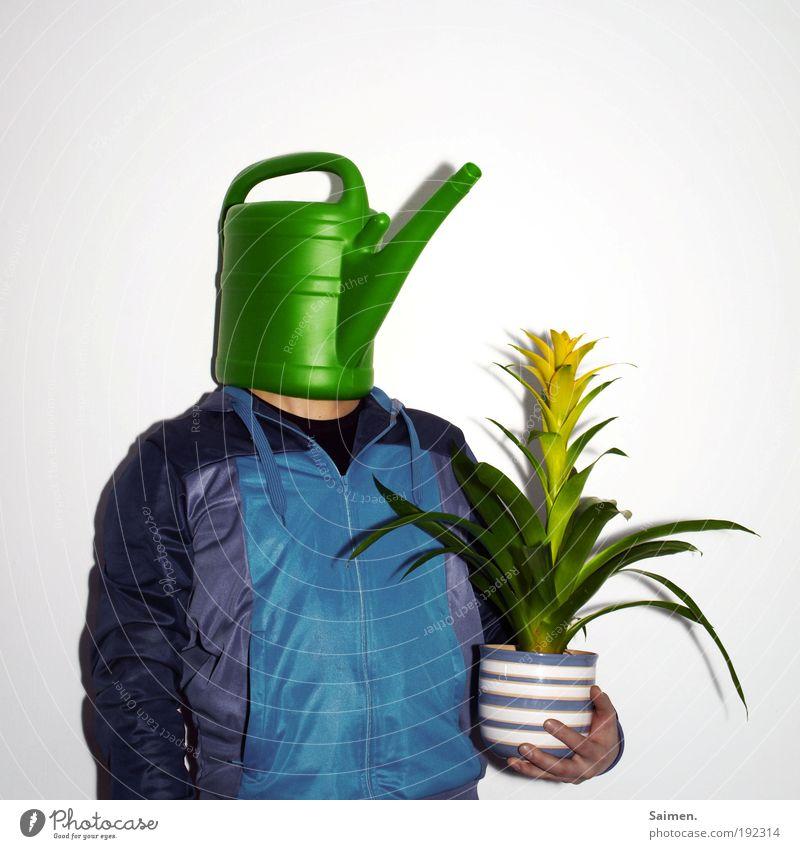 pflanzenliebhaber maskulin Mann Erwachsene 1 Mensch Pflanze Blume Blatt Blüte Grünpflanze Topfpflanze berühren Blühend stehen Umarmen Wachstum außergewöhnlich