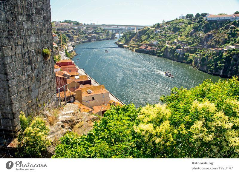 Douro Himmel Natur alt Pflanze blau Sommer Stadt grün Baum Landschaft Haus Umwelt Wand Mauer Horizont Wetter