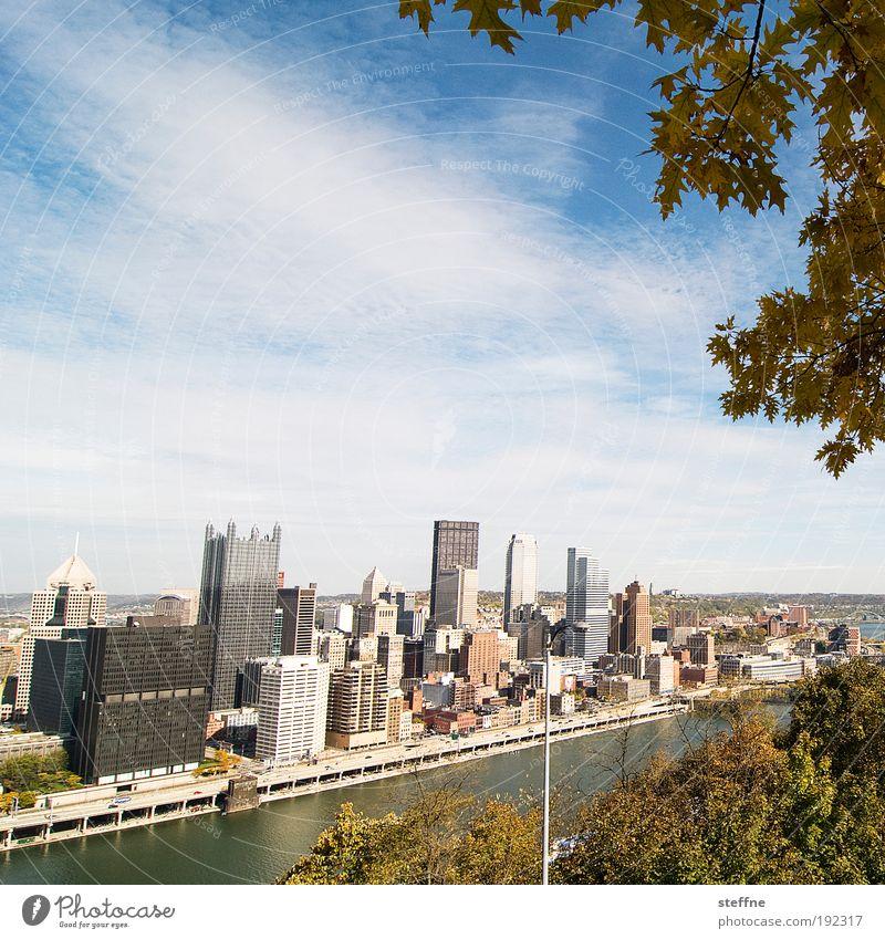 urbanatur Himmel Herbst Schönes Wetter Baum Flussufer Pittsburgh USA Hafenstadt Stadtzentrum Skyline überbevölkert Hochhaus Bankgebäude Farbfoto Außenaufnahme