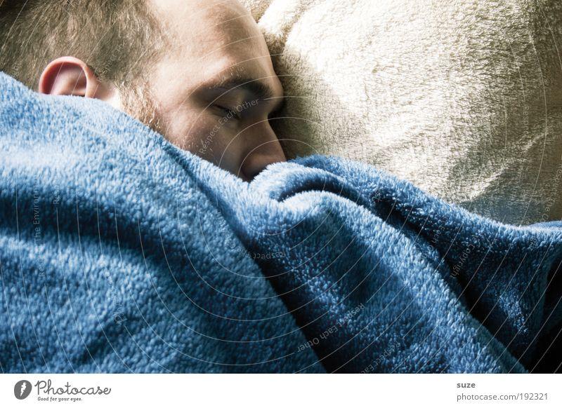 Siebenschläfer Mensch ruhig Erwachsene Kopf träumen Zufriedenheit Wohnung liegen schlafen 18-30 Jahre Decke kuschlig Geborgenheit Kissen Feierabend Junger Mann