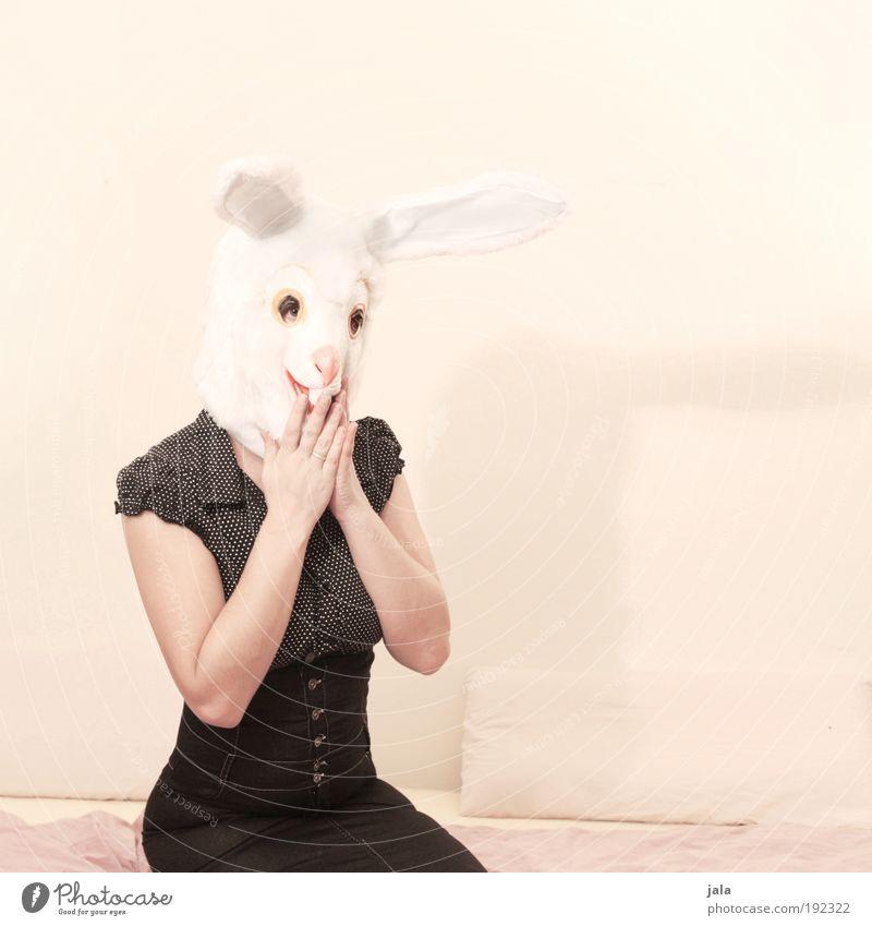 Oops, she did it again! Frau Mensch weiß schön schwarz Tier Erwachsene feminin hell sitzen verrückt Ostern Hase & Kaninchen frech Haustier Junge Frau
