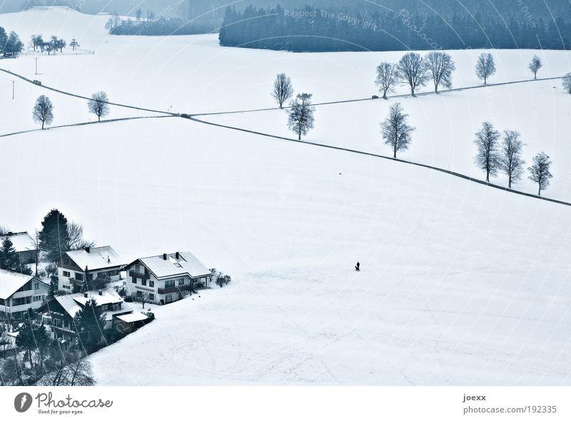 Ziellinien Natur Landschaft Winter Eis Frost Schnee Feld Dorf Kleinstadt Verkehrswege Straße Straßenkreuzung oben unten Vogelperspektive Stadtrand Farbfoto