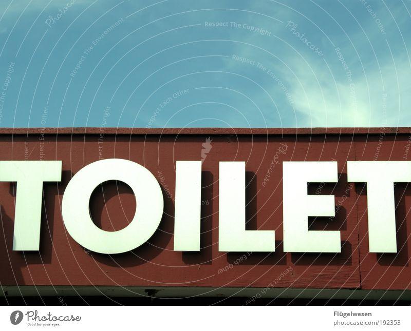 Du hast das Ziehen vergessen, mein Michael! Toilette Sanitäranlagen Farbfoto Außenaufnahme Tag Hinweisschild Typographie Englisch Schriftzeichen