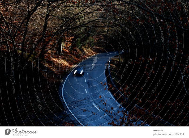 Landstrasse Landschaft Herbst Baum Wald Verkehr Verkehrsmittel Verkehrswege Straßenverkehr Autofahren Fahrzeug PKW Ferien & Urlaub & Reisen Landstraße Farbfoto