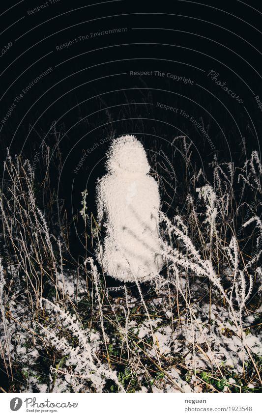 ohne Titel Mensch Frau Erwachsene Kunst Skulptur Musik Umwelt Natur Winter Eis Frost weiß Angst Entsetzen gefährlich Abenteuer Endzeitstimmung kalt