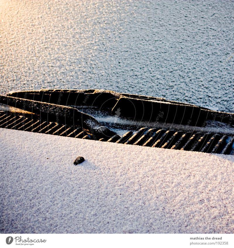 AN JEDEM VEDAMMTEN MORGEN Winter ruhig kalt Schnee PKW Eis Frost Autofahren Fahrzeug minimalistisch bedeckt kratzen Licht unberührt Windschutzscheibe Motorhaube