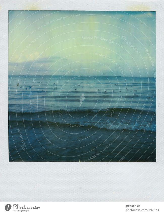 Swinemünde 09- noch eins Himmel Natur blau Wasser Ferien & Urlaub & Reisen Sommer Meer Ferne dunkel Freiheit Küste Stimmung Polaroid Wellen Wind wild