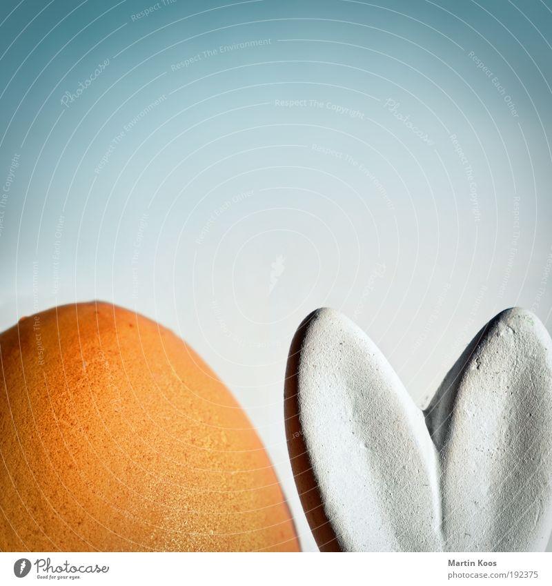 OV OsterVeranstaltung weiß Freude Ernährung Stil Frühling hell Herz Design rund Ostern Dekoration & Verzierung malen Ei Hülle Osterhase Osterei