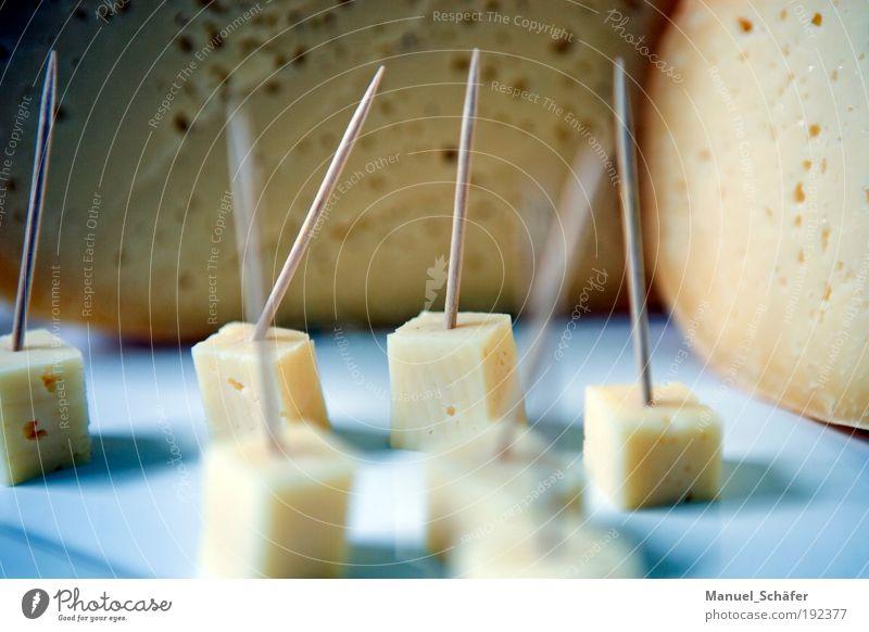 Käsehäppchen Käselaib Teile u. Stücke Würfel Speise käseigel Anschnitt Gesundheit Milcherzeugnisse Ernährung Lebensmittel casein Gouda Vegetarische Ernährung