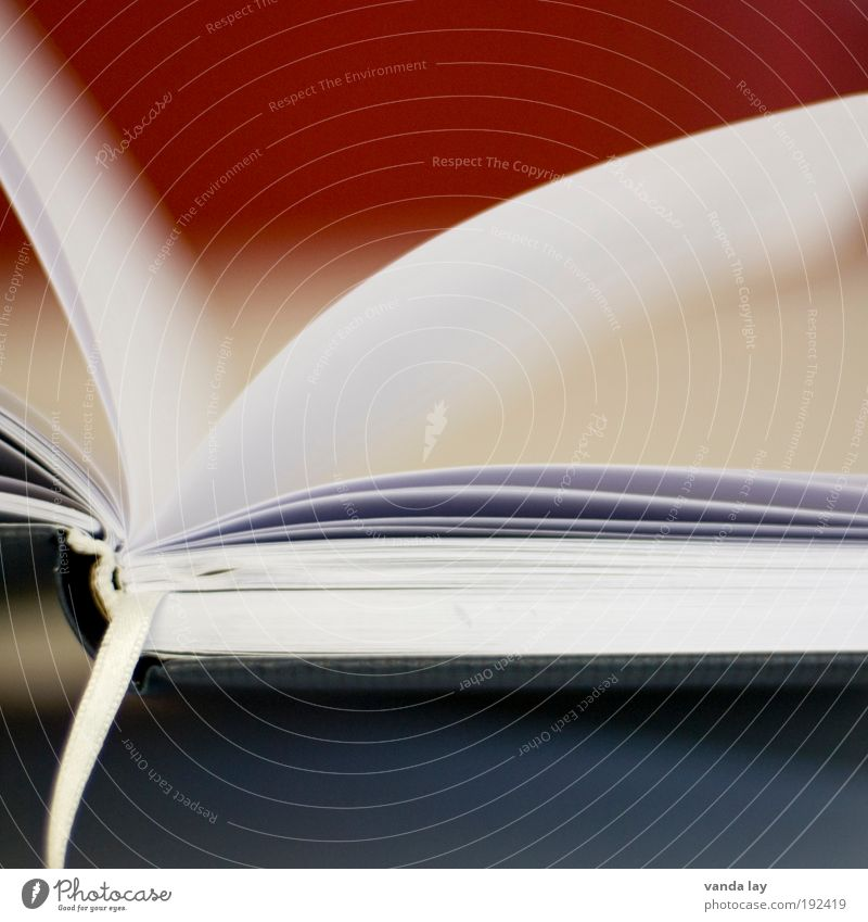 Leselust Kunst Buch Bibliothek Weisheit klug Wissen Lesezeichen blatt Papier Buchseite Farbfoto Menschenleer Textfreiraum oben Textfreiraum unten Unschärfe