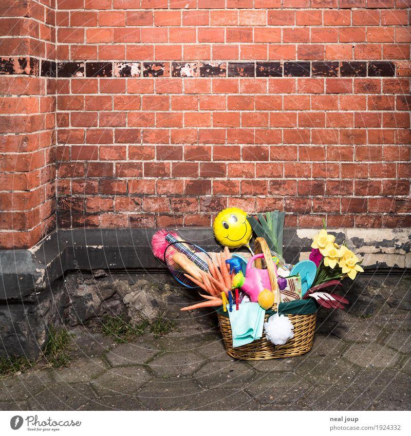 Shopping Gemüse Baguette kaufen sparen Mauer Wand Backstein Gießkanne Kitsch Krimskrams Einkaufskorb Blumenstrauß frisch Gesundheit einzigartig trashig