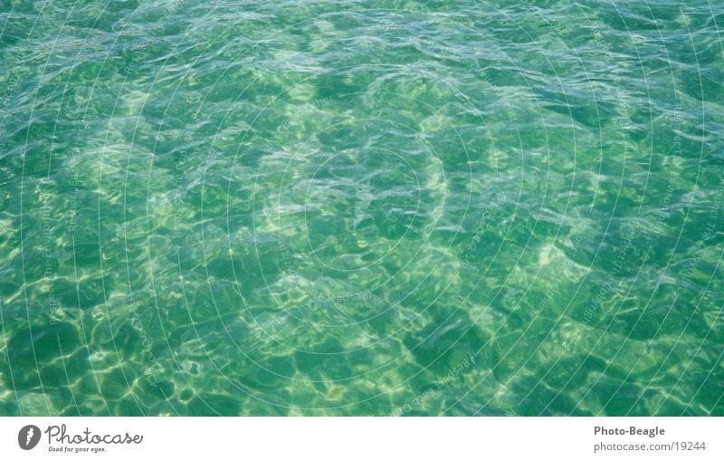 Ostsee- was sonst! :-D Wasser Meer Ferien & Urlaub & Reisen See nass Meerwasser