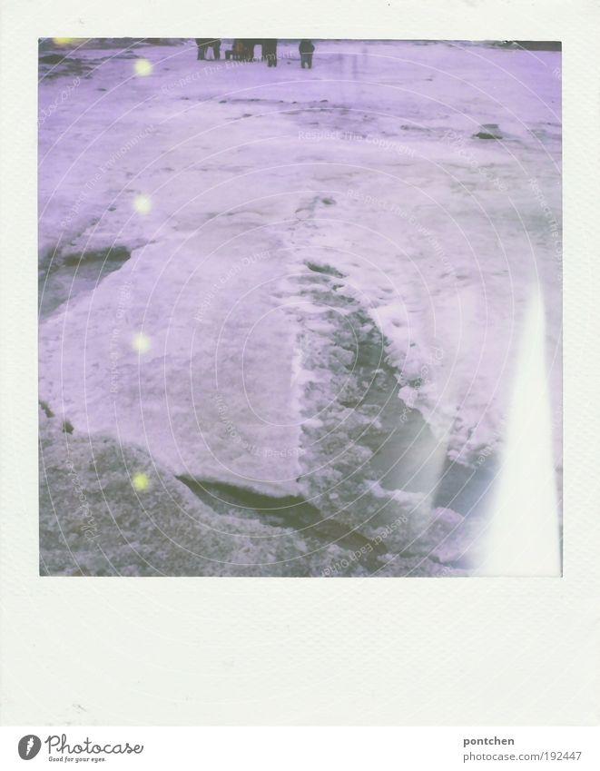 Eisschollen. Spaziergänger auf zugefrorener Nordsee. Winter Freizeit & Hobby Ferien & Urlaub & Reisen Ausflug Schnee Winterurlaub Mensch Menschengruppe Umwelt