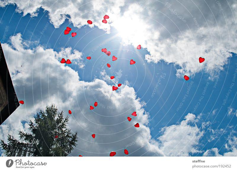 HAPPY BIRTHDAY Himmel Wolken Schönes Wetter Freude Liebe Feste & Feiern Luftballon Farbfoto Außenaufnahme