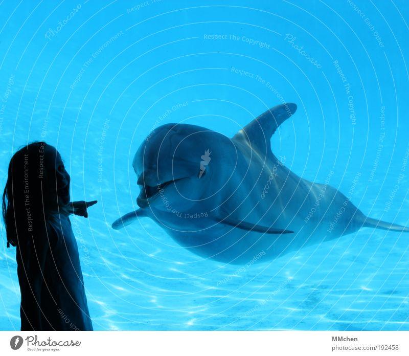 Guck mal! Wasser Meer blau Sommer Freude Ferien & Urlaub & Reisen Tier Freiheit Glück Zufriedenheit Ausflug Fröhlichkeit Sicherheit Abenteuer Tourismus Kommunizieren