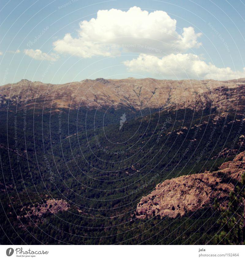 Natur pur Landschaft Himmel Wolken Sommer Schönes Wetter Baum Wald Felsen Berge u. Gebirge Lebensfreude Aussicht Farbfoto Außenaufnahme Menschenleer Tag