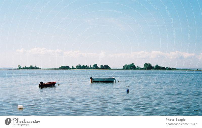 Am A.... der Welt :-) Wasser Strand ruhig Einsamkeit See Wasserfahrzeug Europa Frieden Ostsee Möwe Lachmöwe Fehmarn
