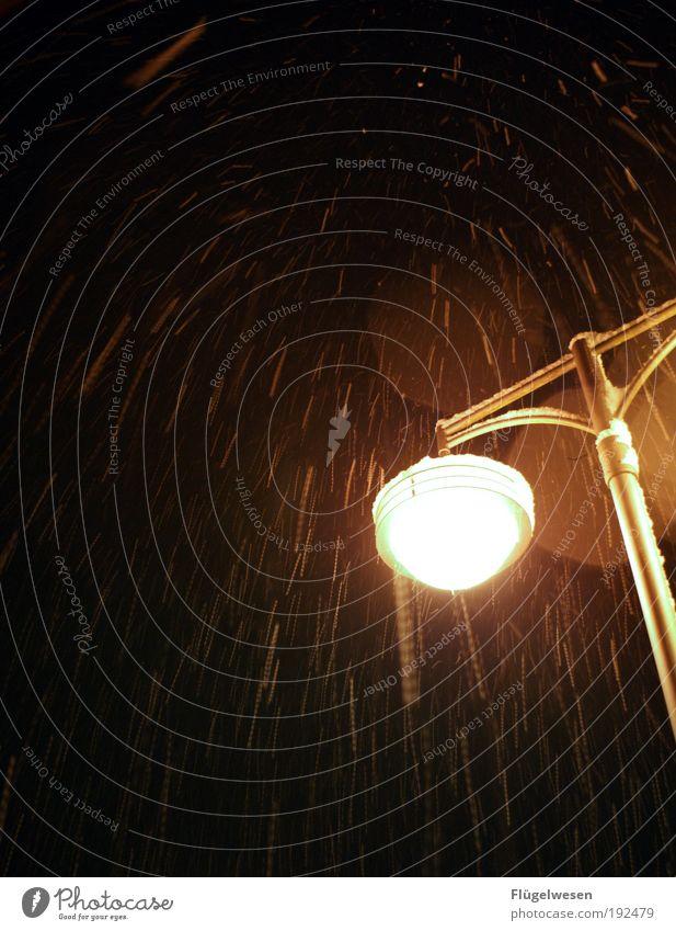 Ein SchneeFall für zwei Natur Winter Umwelt Lampe hell Wetter Angst glänzend Klima Lifestyle bedrohlich einzigartig Schutz Unwetter Lebensfreude