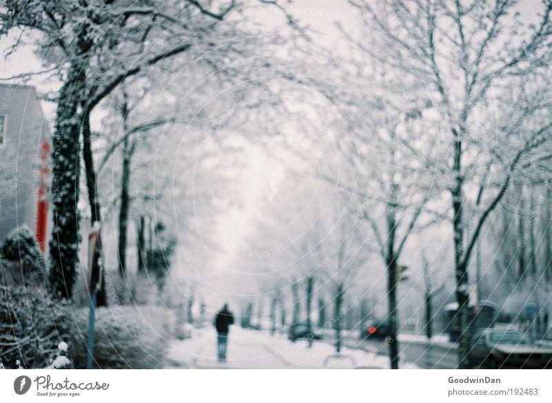 Analoger Wintertraum Mensch Mann Himmel weiß Baum Wolken Ferne Straße Schnee träumen Erwachsene Straßenverkehr Nebel maskulin