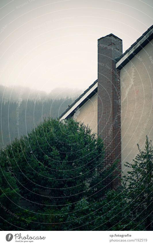 deutsche Tristesse Wohnung Haus Traumhaus Renovieren Schornstein Ruhestand Pflanze Baum Sträucher Kleinstadt Einfamilienhaus Bauwerk Gebäude Architektur