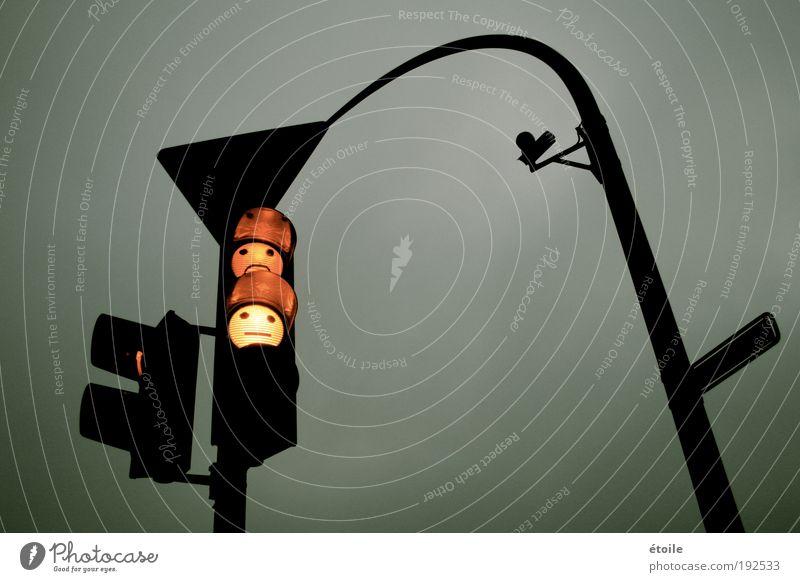 Ampelfreunde Schilder & Markierungen Ziel Hinweisschild Schutzschild stagnierend Verkehrszeichen Dämmerung Symbole & Metaphern Warnschild