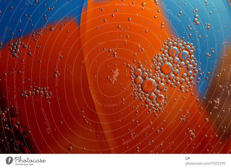 Orangenscheiben Lifestyle Reichtum elegant Stil Design exotisch Freude schön Wellness Leben harmonisch Wohlgefühl Zufriedenheit Sinnesorgane Erholung ruhig