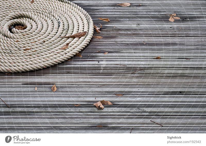 Das Seil Herbst Blatt Terrasse Garten Schnecke Holz Knoten liegen Tauziehen rund braun grau Stimmung ruhig aufgerollt Rolle Farbfoto Außenaufnahme