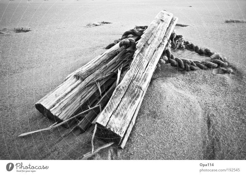 Strandgut Natur weiß Meer schwarz Arbeit & Erwerbstätigkeit Holz Küste Erde Insel Nordsee fest Verfall anstrengen Ärger Schwarzweißfoto