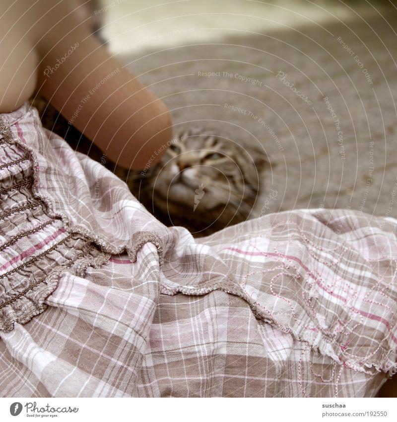 katze streicheln. aber katze will nicht. Spielen Kind Tierliebe Leben gefährlich Kleid Stoff falschherum Arm Katze anfauchen Vorsicht Gedeckte Farben Tag